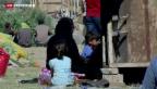 Video «Hunderte Iraker flüchten aus Ramadi» abspielen
