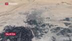 Video «Massengrab in Palmyra entdeckt» abspielen