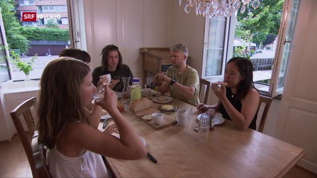 Video «Besuch bei einer lärmgeplagten Familie» abspielen