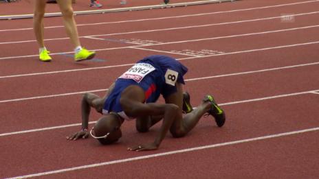 Video «Leichtathletik-EM: Letzte Runde 5000 m Männer» abspielen