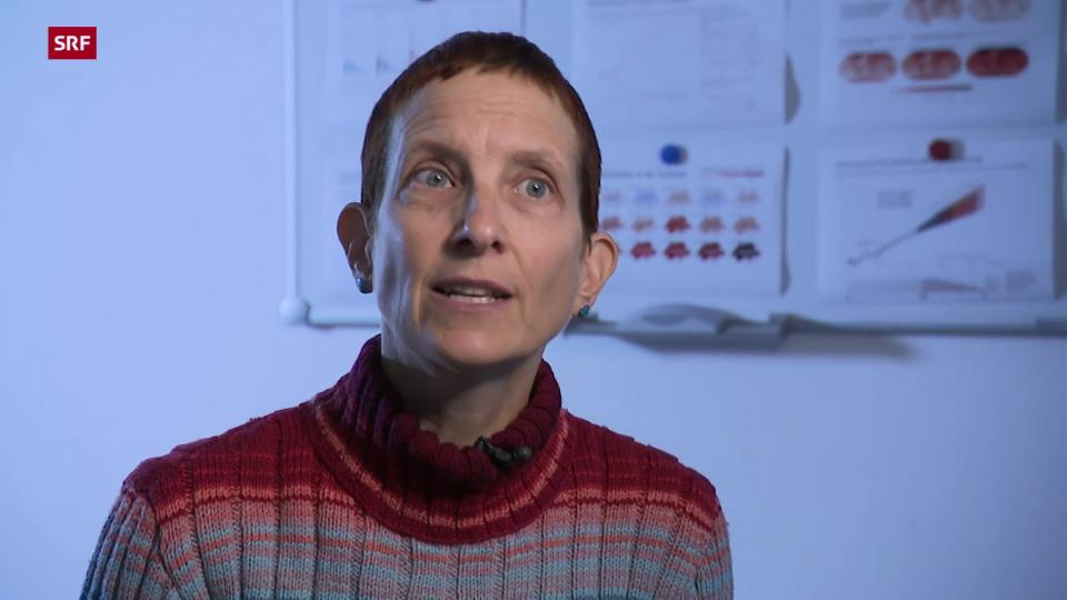 Anja Kollmuss, Politikwissensschaftlerin: «Die ganze Welt muss möglichst schnell Emissionen verringern.»