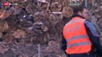 Video «Suizid oder Unfall beim Schützen von Menznau» abspielen