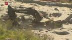 Video «Val Bondasca gesperrt» abspielen