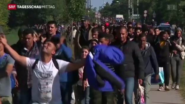Video «Syrer weiter auf der Flucht» abspielen