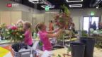 Video ««SwissSkills» - Lernende im Wettkampf» abspielen
