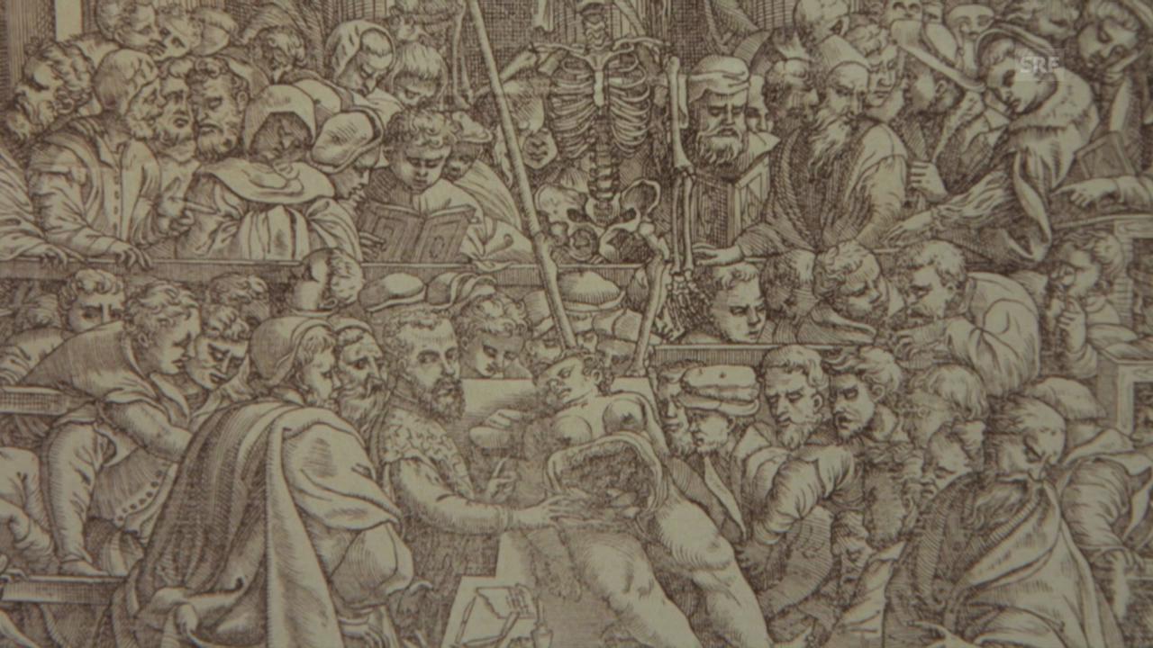 Mehr als 470 Jahre alt – das Skelett in Basel (SRF)