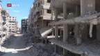 Video «FOKUS: Syrien im Wiederaufbau» abspielen