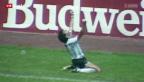 Video «WM 2014: Rückblick WM-Finalduelle Deutschland - Argentinien» abspielen