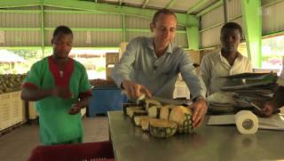 Video «Schweizer exportiert Ananas aus Ghana» abspielen