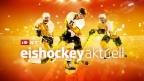 eishockeyaktuell