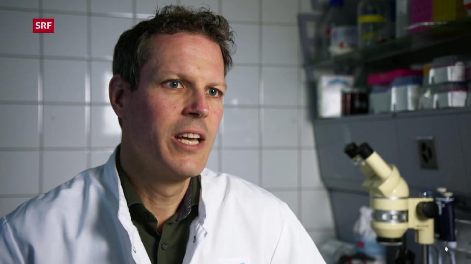 Pie Müller, Biologe: «Die Häufigkeit von Fällen hängt mit den höheren Temperaturen zusammen»