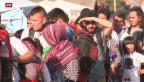 Video «Ban Ki Moon fordert sichere Einreisewege für Flüchtlinge» abspielen