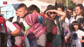 Video «Ban Ki Moon fordert sichere Einreisewege für Flüchtlinge » abspielen