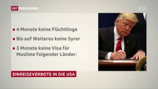 Video «Eine Woche Trump als US-Präsident» abspielen