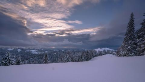 Winter oder Frühling? Summiswald/BE, T. Messerli