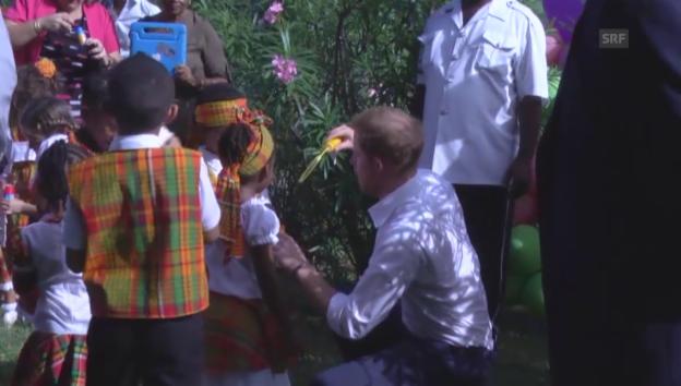 Video «Prinz Harry beim Seifenblasen machen (unkom.)» abspielen