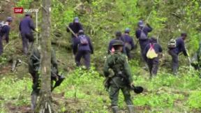 Video «Wieso der Frieden in Kolumbien von der Koka-Pflanze abhängt» abspielen