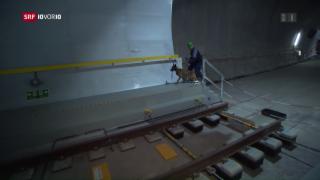 Video «FOKUS: Sicherheit im Gotthard Tunnel» abspielen