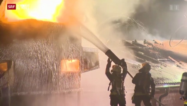 Video «Brand zerstört Schweinestall» abspielen
