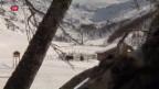 Video «Val Fex als Kontrast zum Ski-Zirkus» abspielen