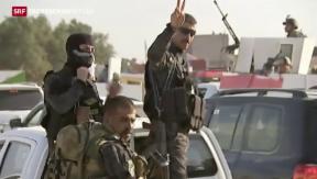 Video «Irak fordert Luftunterstützung » abspielen