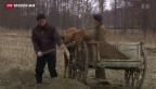 Video «Systematische Massentötungen und Folter» abspielen