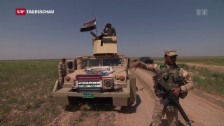 Video «Vorstoss auf Mossul» abspielen