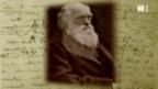 Video «Darwin und die Evolutionstheorie» abspielen