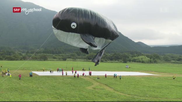 Video «Achtung! Experiment: Der schwebende Wal (4/52)» abspielen