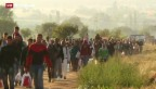 Video «Serbien bittet Brüssel um Flüchtlingshilfe» abspielen