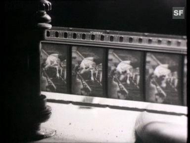 50 Jahre Cinémathèque