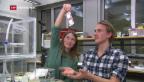 Video «ETH entwickelt neue Elektroden» abspielen