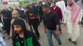 Video «Saudi Arabien vollstreckt umstrittene Todesurteile» abspielen