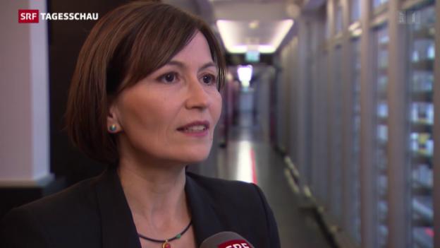 Video «Parteipräsidenten zu Flüchtlingskrise» abspielen