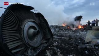 Video «Erster Bericht zu Flug MH17» abspielen