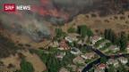 Video Dutzende Tote bei Waldbränden abspielen.