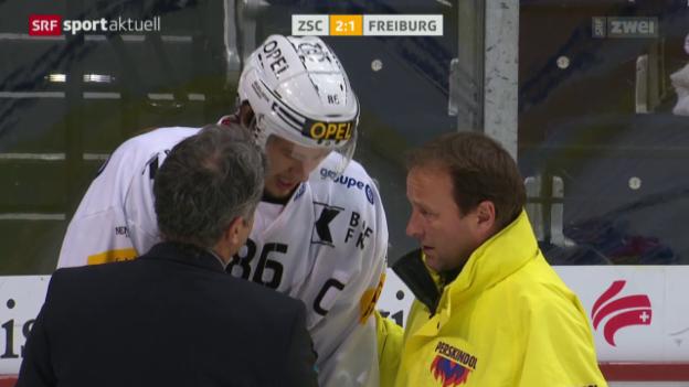 Video «Eishockey: NLA, ZSC Lions - Freiburg» abspielen