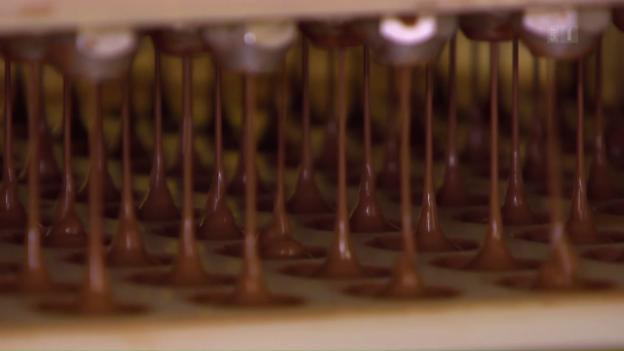 Video «ECO Spezial: Schokolade – die bittersüsse Globalisierungsstory» abspielen