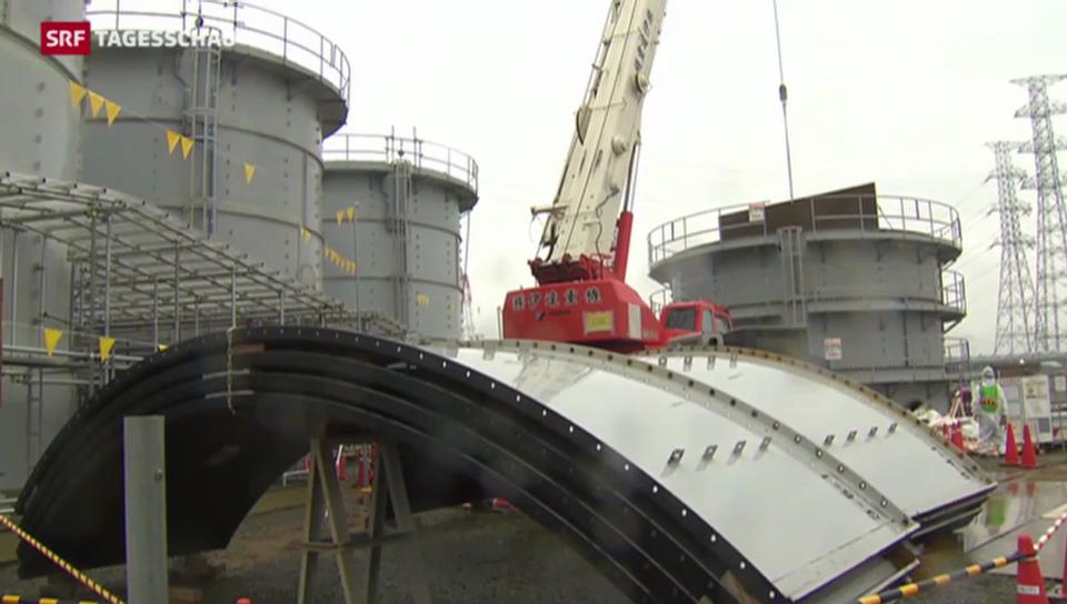 Japan setzt weiter auf Atomstrom