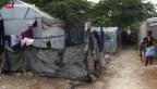Video «Haiti hat noch einen weiten Weg vor sich» abspielen