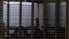 Video «Serientäter vor Gericht» abspielen