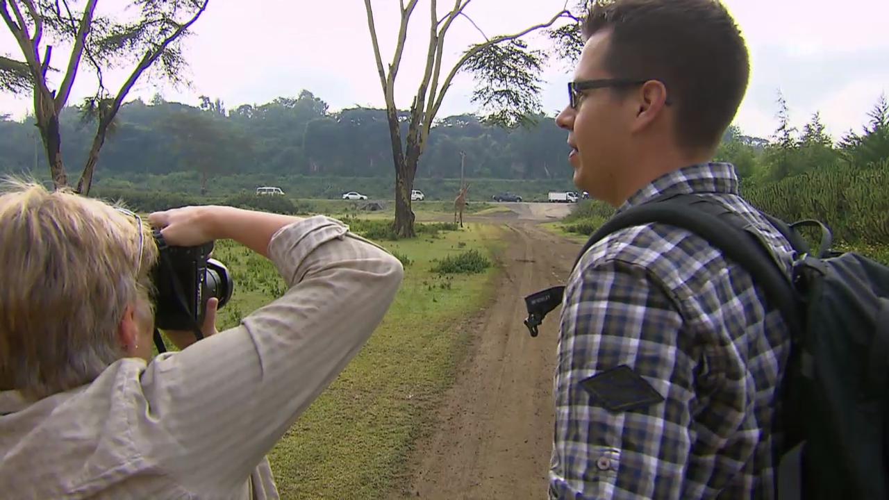 Die «Jobtausch»-Lehrer treffen auf dem Schulweg auf eine Giraffe