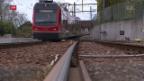Video «Die Hassliebe zum Solothurner Bipperlisi» abspielen