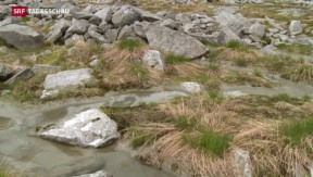 Video «Erhöhtes Risiko für Wanderer» abspielen