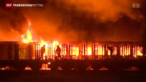 Video «Bahnwagen brannten im Kanton Thurgau» abspielen
