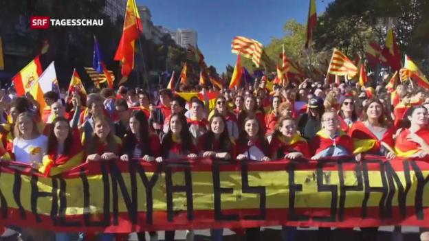 Video «Tagesschau vom 29.10.2017, 19:30» abspielen