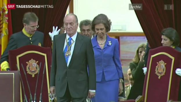 Video «Spanischer König dankt ab» abspielen