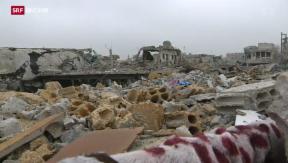Video «Zerstörtes Kobane» abspielen