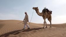 Link öffnet eine Lightbox. Video Herausforderung Wüste – Sinnsuche in der Sahara abspielen