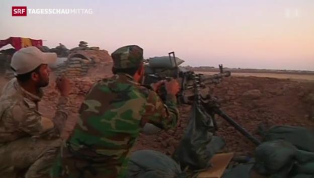 Video «Deutsche Waffen für kurdische Kämpfer» abspielen